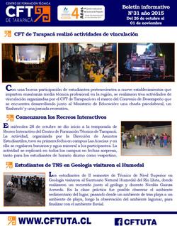 Boletín N°31