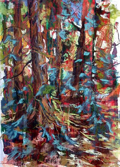 Beneath The Cedar Canopy.JPG
