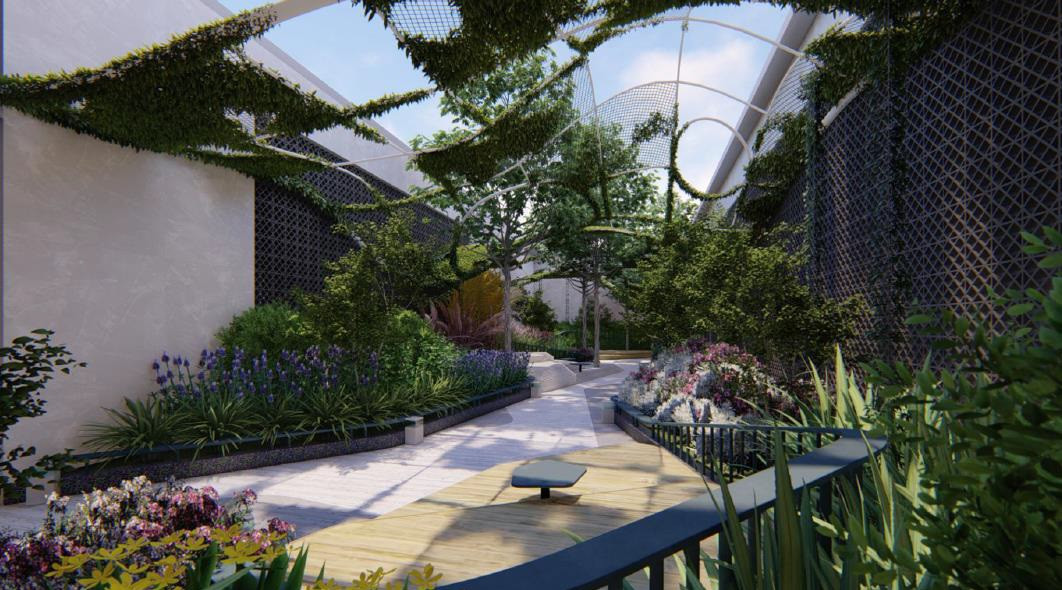 Friddlewoodz - Sky Garden.jpeg