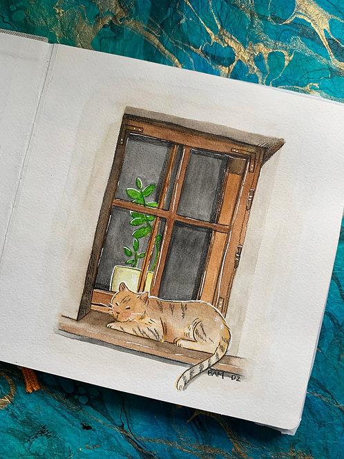 Cat Nap Original