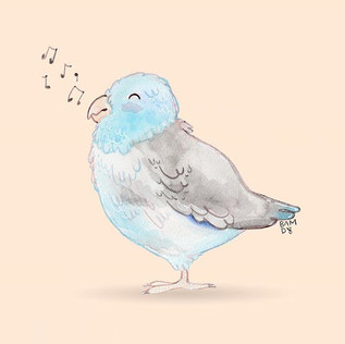 A little Birdy told me