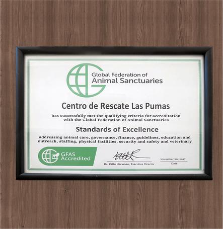 img_certificado.png