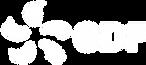 Logo EDF_blanc.png
