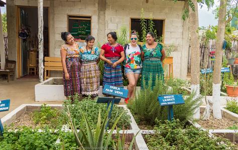 Plantas medicinales para curar el alma | Guatemala