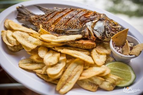 Dónde comer en el Lago de Yojoa
