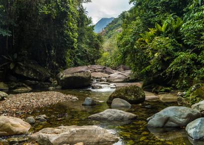 Sendero Guaruma, La Ceiba