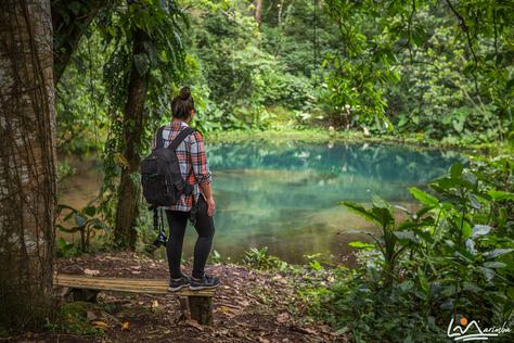 #LaMarimba en Bioparque Paradise, realmente un paraíso