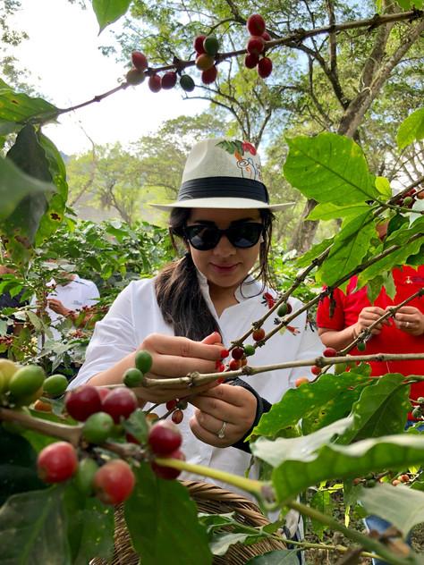 Uno de los lugares más lindos de Honduras, Hacienda Montecristo