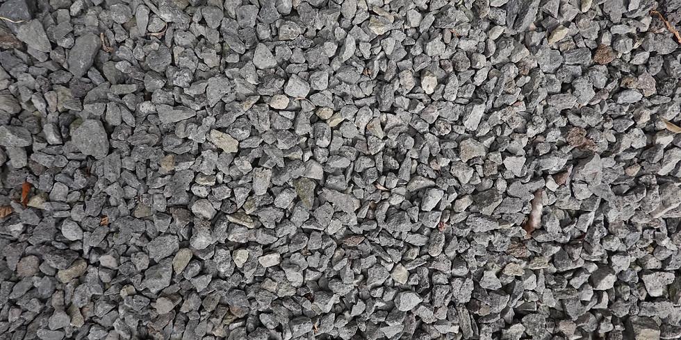 Alternativen für Schottergärten - Klimatauglich, vielfältig und bunt!