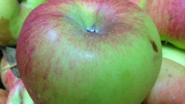Organic Ballarat - Apple (kg)