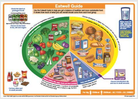 eatwell guide thumb.JPG