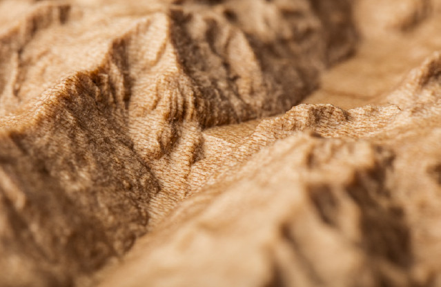 Valais Erable details2.jpg