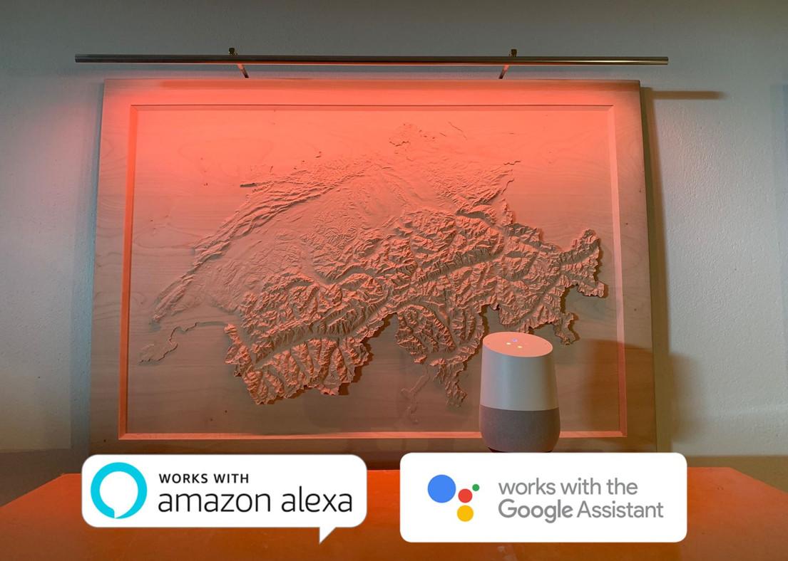 Google Home et Alexa.JPG