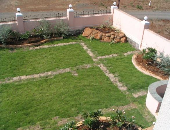 garden plot.JPG