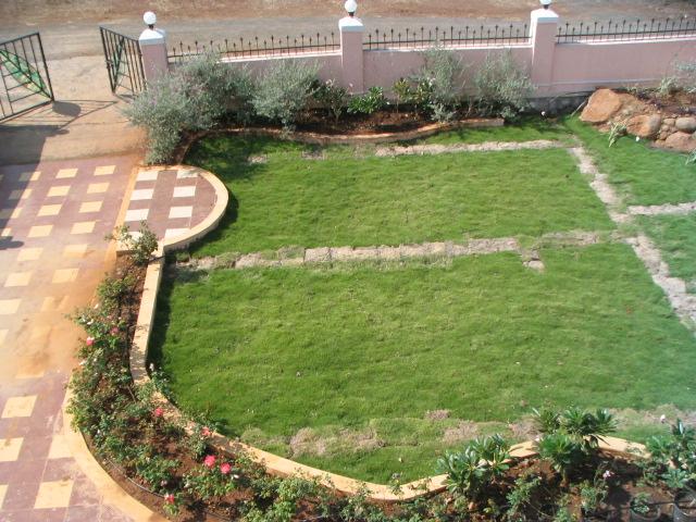 garden 2nd home.JPG