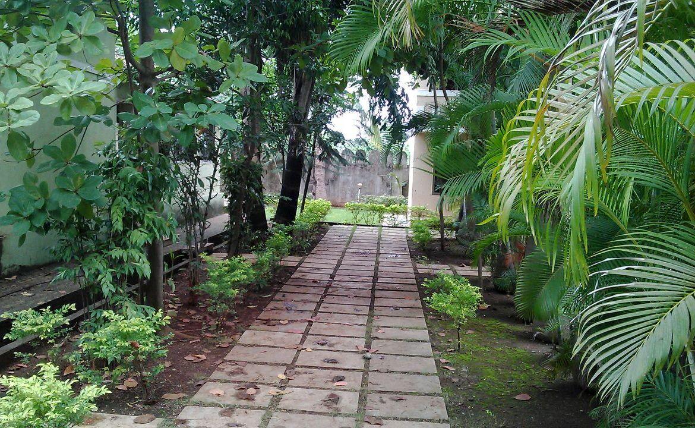 Pathway garden.jpg