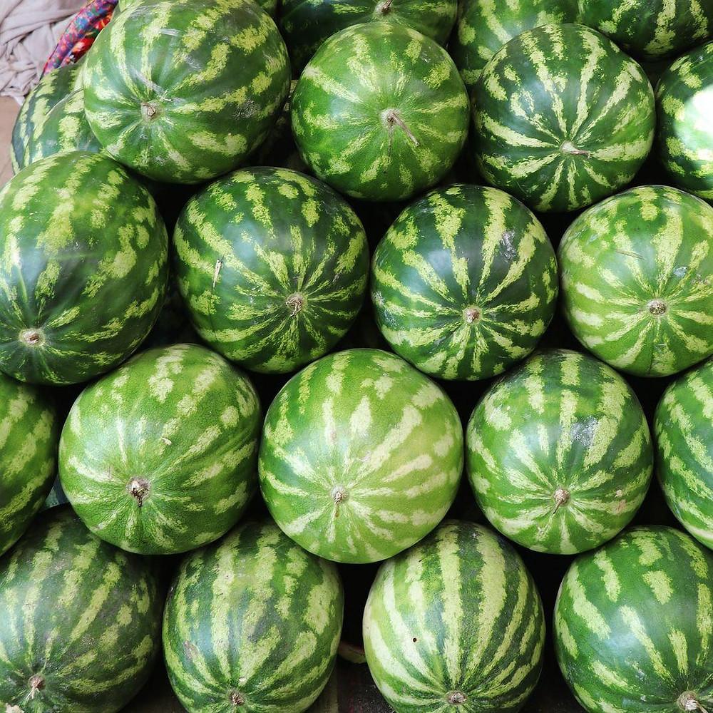 watermelons_uzbekistan