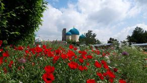 Best time to visit Uzbekistan - Beste Reisezeit für Usbekistan