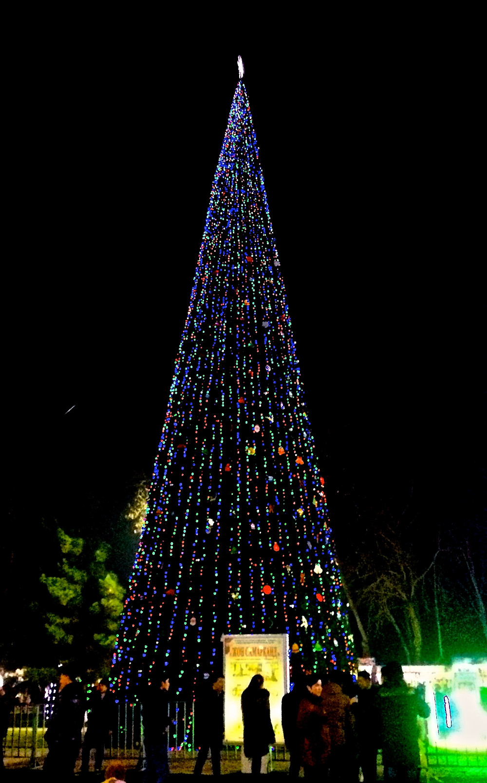 christmas_tree_samarkand