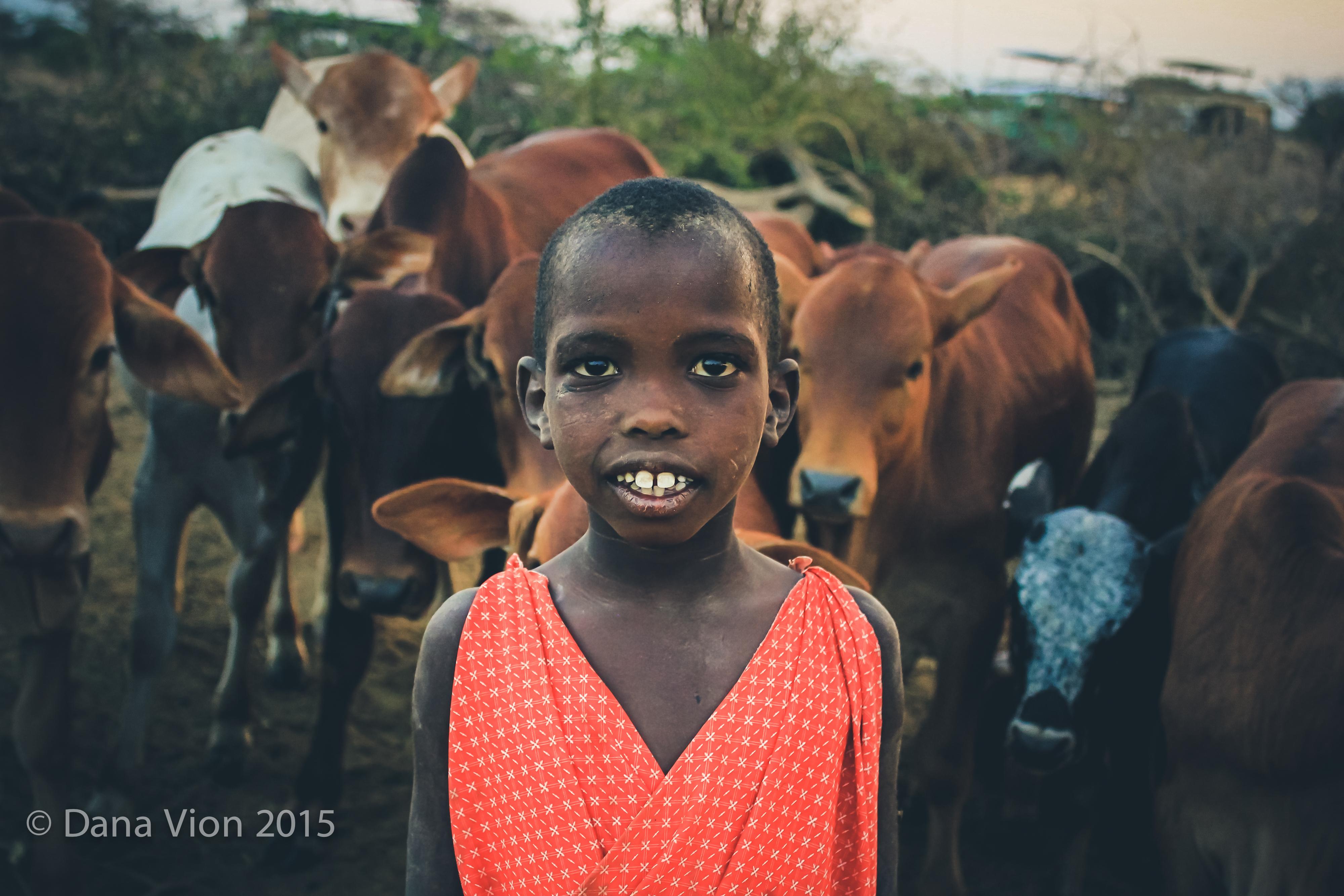 Masaai boy and cows South Rift VION-5249