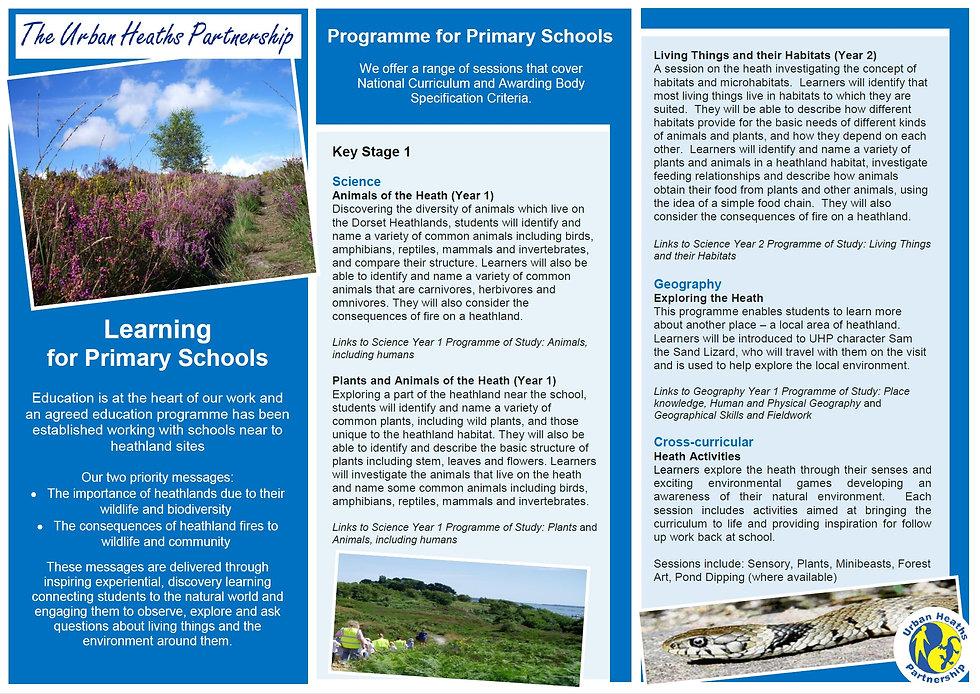 KS1 Schools Programme.jpg