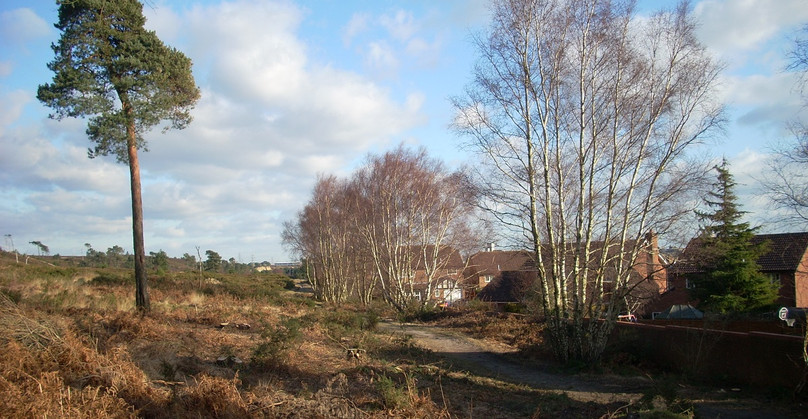 Canford Heath, houses and the heath resi