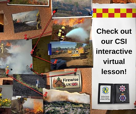 CSI interactive virtual lesson.png