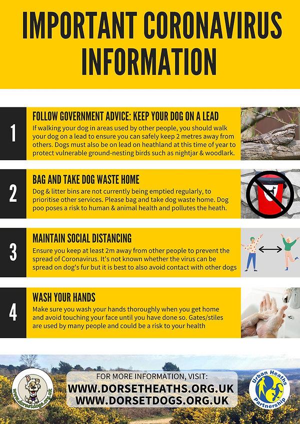 Important Coronavirus Information Poster