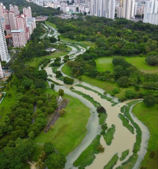Bishan Park, Flussebenen. Singapur