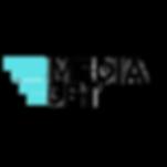 mediajet logo.png