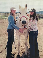 reiki with horses.jpg