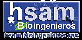 logo-hsam-color-png.png