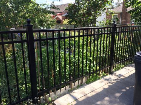 PF6 - Picket Fence