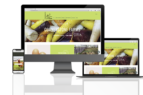 Wix 5 Page Website with Online Store Package
