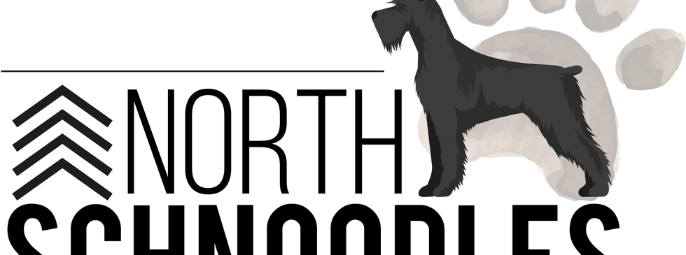 Up North Schnoodles Logo 1 White backgro