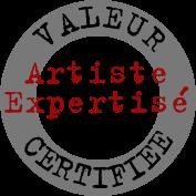 artiste_expertise.png