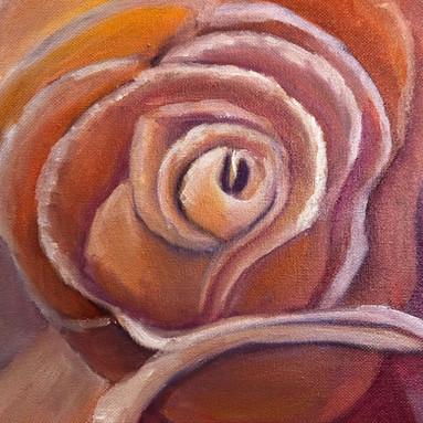 Sharons Rose