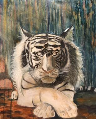Peaceful Tiger