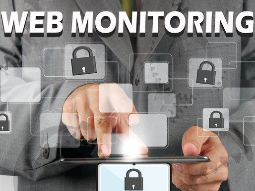 What is FSL Support's Web Monitoring?