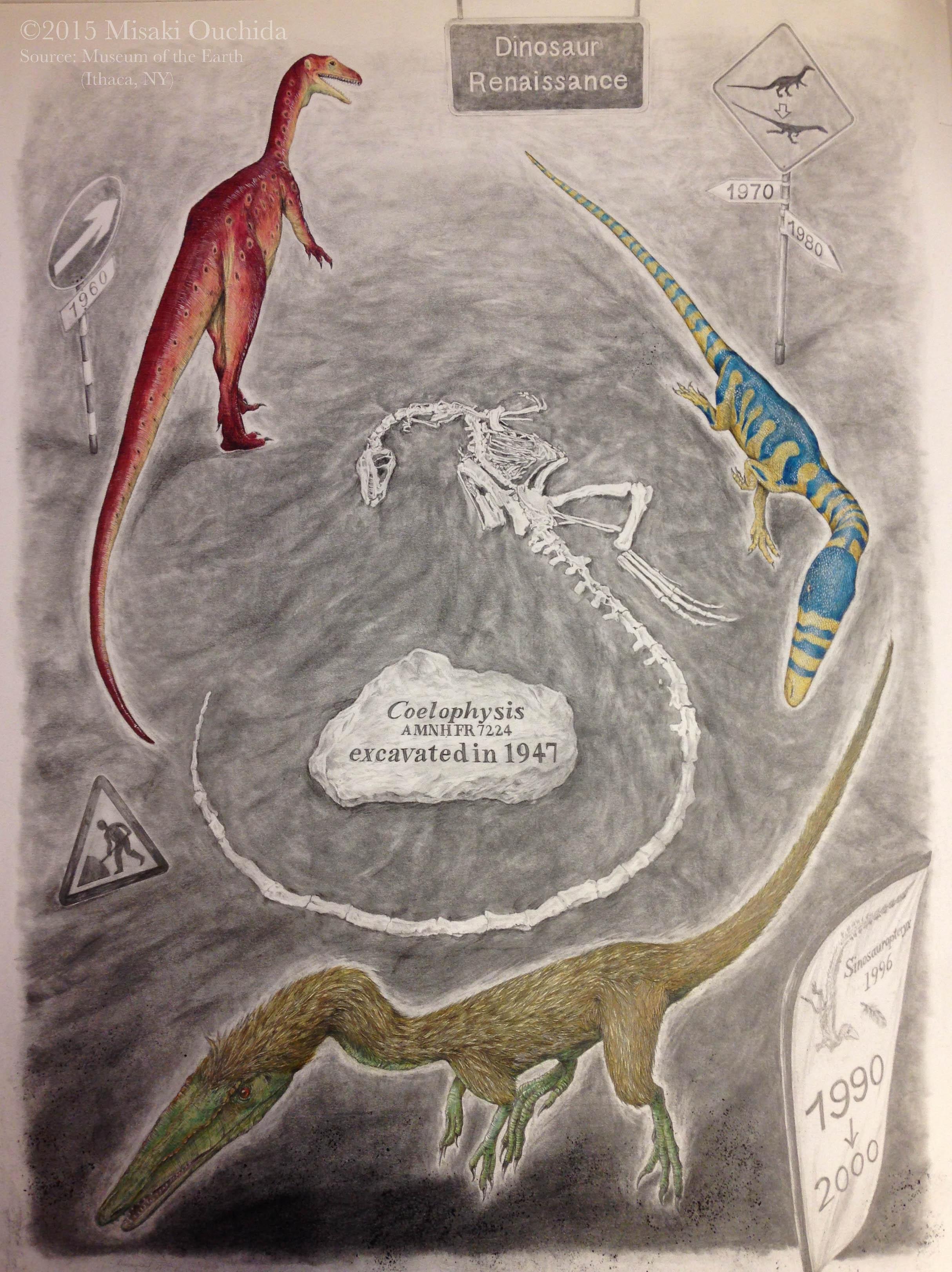 Coelophysis
