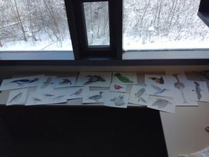 Good-bye Cornell Lab of Ornithology!