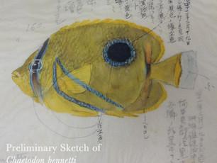 Meet Kumataro Ito's Work