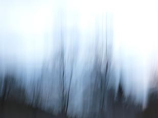 Lichtimpressionen div_4517124.jpg