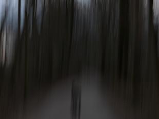 Lichtimpressionen div_4517024.jpg