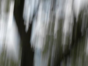 Lichtimpressionen div_4517977.jpg