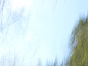 Lichtimpressionen div_4517794.jpg