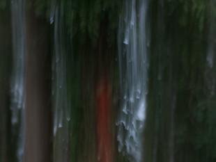 Lichtimpressionen div_4517076.jpg
