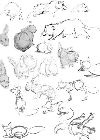 Random animal study_J.jpg