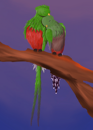 Quetzal_edited.png