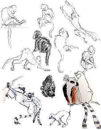 Monkeys and Lemurs_J.jpg
